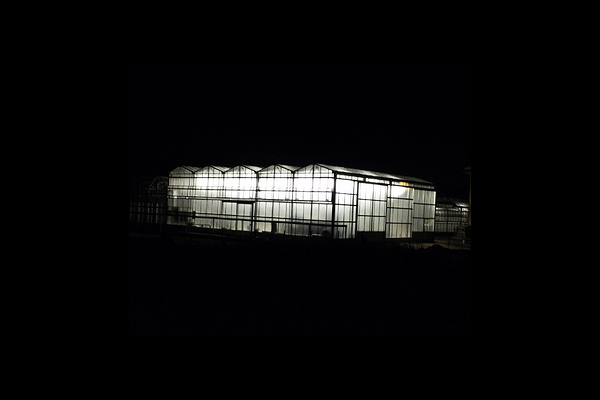 Illuminazione artificiale agricontrol